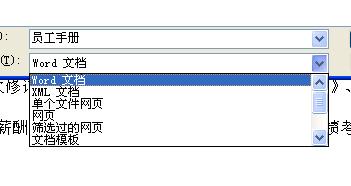 Word用另一种格式保存文件
