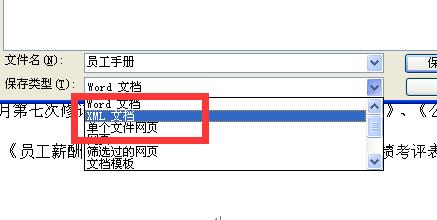将文档保存为 XML 文件